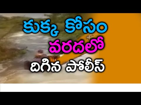 TeluguStop.com - Police Home Guard Saved Dog From Flood Water వరదలో చిక్కుకున్న కుక్క సాహసం చేసి కాపాడిన పోలీస్-Telugu Trending Viral Videos-Telugu Tollywood Photo Image
