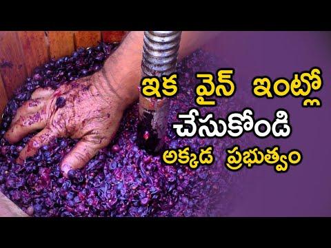 TeluguStop.com - ఇంట్లో నే వైన్ తయారీ కి గ్రీన్ సిగ్నల్ ఇచ్చిన ప్రభుత్వం .. Wine Making At Home-Telugu Trending Viral Videos-Telugu Tollywood Photo Image