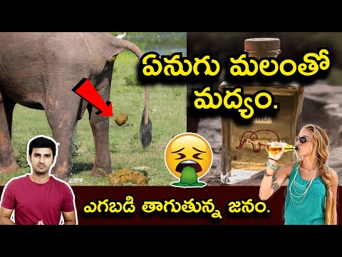 Indlovu Gin From Elephant Dung | ఏనుగు మలంతో మద్యం.-Indlovu Gin From Elephant Dung ఏనుగు మలంతో మద్యం.-Telugu Trending Viral Videos-Telugu Tollywood Photo Image-TeluguStop.com