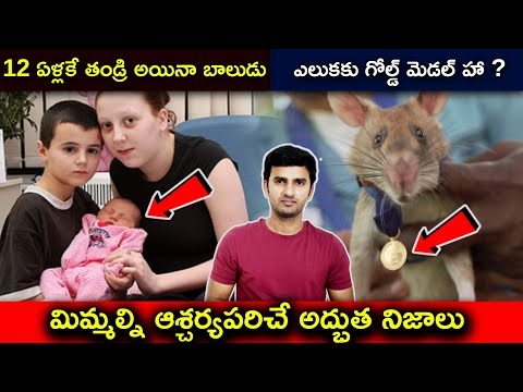 Top Interesting Facts Explained In Telugu  telugu Facts  top Facts  -TeluguStop.com