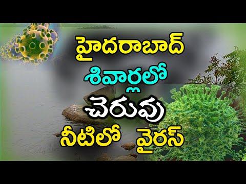 Coronavirus Existence In Hyderabad Ponds? || హైదరాబాద్ శివార్లలో చెరువు నీటిలో వైరస్..?-TeluguStop.com