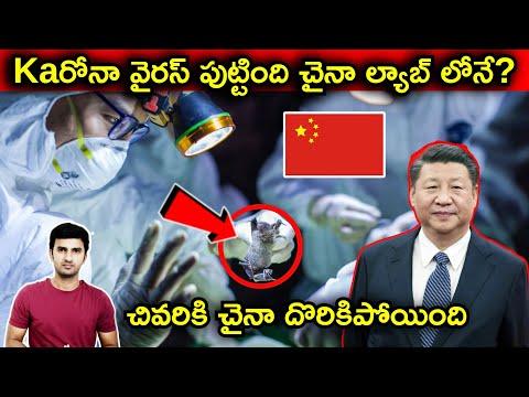 Interesting Facts About China Virus Origin Explained IN Telugu |Telugu Facts|-Interesting Facts About China Virus Origin Explained IN Telugu Telugu Facts-Telugu Trending Viral Videos-Telugu Tollywood Photo Image-TeluguStop.com
