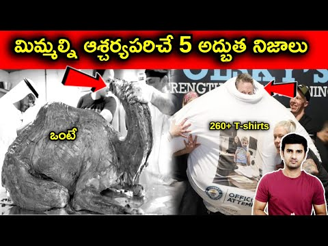 Top 5 Interesting Facts In Telugu  telugu Facts  -TeluguStop.com