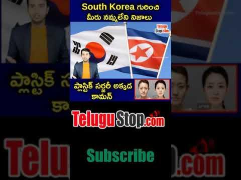 Amazing Facts Abouth South Korea In Telugu | Telugu Facts |-TeluguStop.com