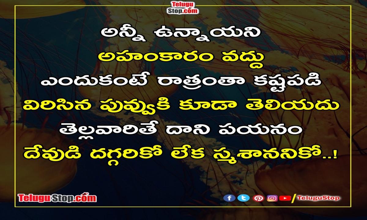 Do Not Be Arrogant Inspiriational Quotes-TeluguStop.com