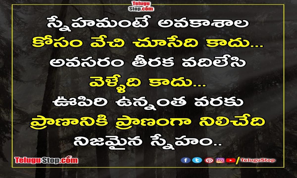 True Friendship Inspirational Quotes-TeluguStop.com