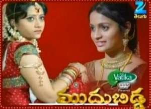 Muddu Bidda Serial Photo,Image,Pics-Muddu Bidda Episodes,muddu Bidda Serial,Muddu Bidda Serial All Episodes,muddu Bidda Serial Watch Online,Watch All Episodes Of Muddu Bidda