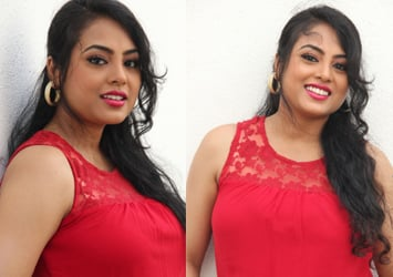 Actress Meenakshi New Sti...