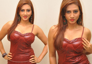 Rishika Hot Stills...