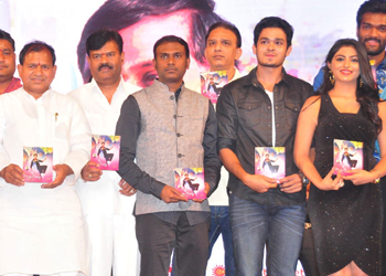 Vinavayya Ramayya Audio Launch