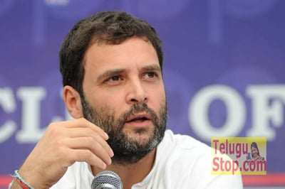 I Don't Understand The Intentions Of The Chief Minister Chandrababu,Rahul Slams CM And PM Padayatra In Anantapur District Photo,Image,Pics-