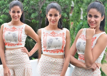 Lavanya Tripati New Stills