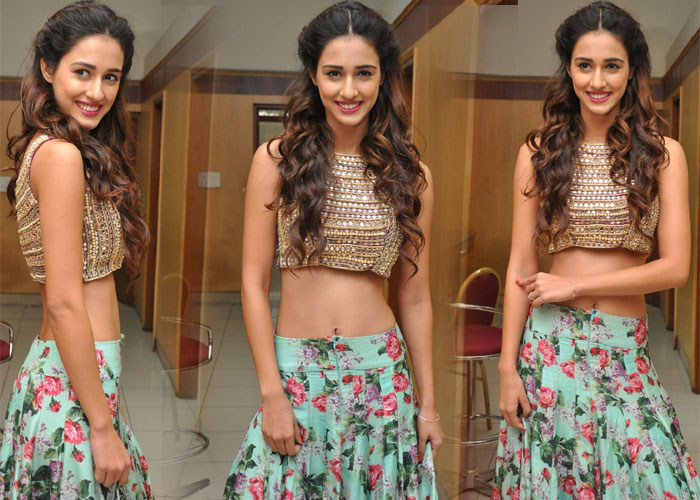 Disha Patani Stills-Disha Patani Stills--Telugu Actress Hot Photos Disha Patani Stills---