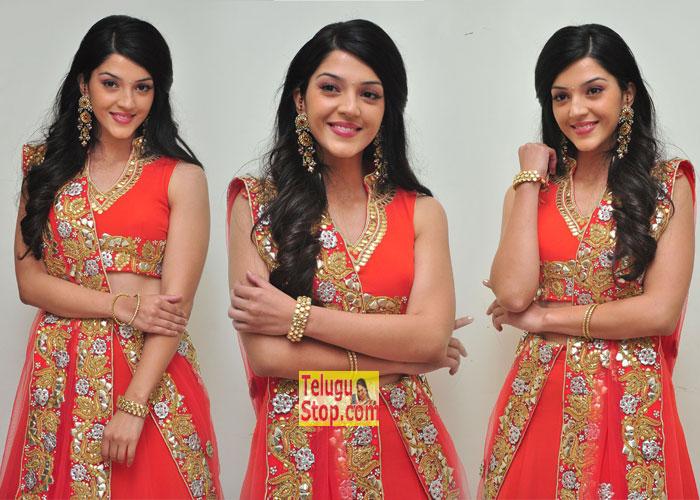 Mehreen Stills- Telugu