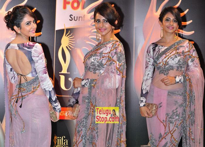 Rakul Preet Singh New Stills-Rakul Preet Singh New Stills--Telugu Actress Hot Photos Rakul Preet Singh New Stills---