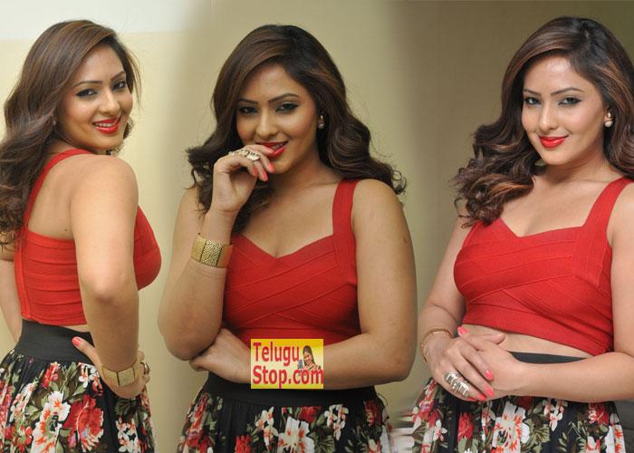 Nikesha Patel New Stills-Nikesha Patel New Stills--Telugu Actress Hot Photos Nikesha Patel New Stills---