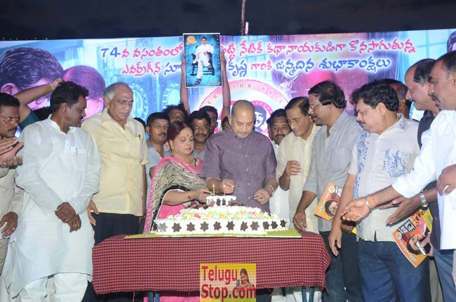 Krishna Birthday Celebrations Photos