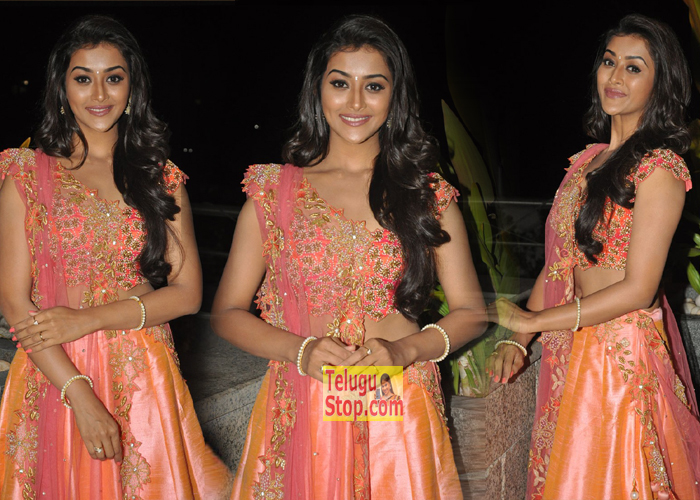 Pooja Jhaveri Stills-Pooja Jhaveri Stills--Telugu Actress Hot Photos Pooja Jhaveri Stills---