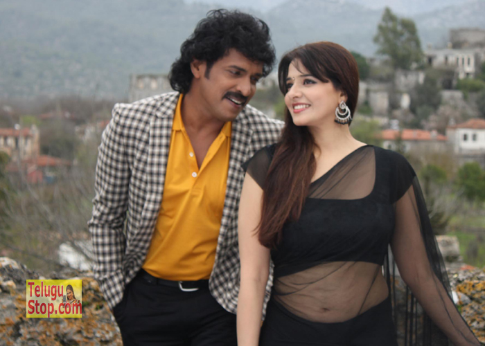 Brahmana Movie Hot Stills
