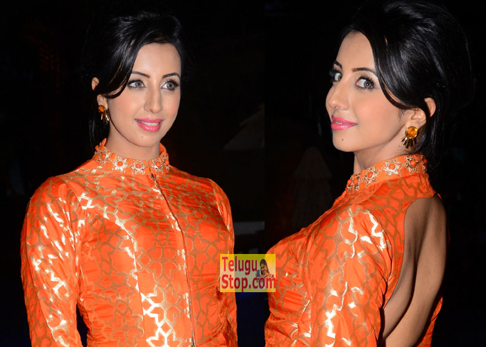 Sanjjanaa New Stills-Sanjjanaa New Stills---