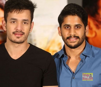 Akhil-the Power Of Jua Naga Chaitanya Is Smaller Than Akhil Premam Collections Ye Maaya Chesave Photo,Image,Pics-
