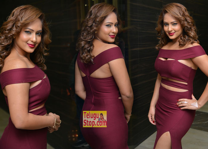 Heroine Nikesha Patel Stills At Kotikokkadu Audio Launch Gallery Latest Images New Photos Download Online HD Quality