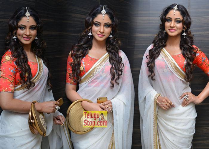 Shillpi Sharma Stills-Shillpi Sharma Stills---