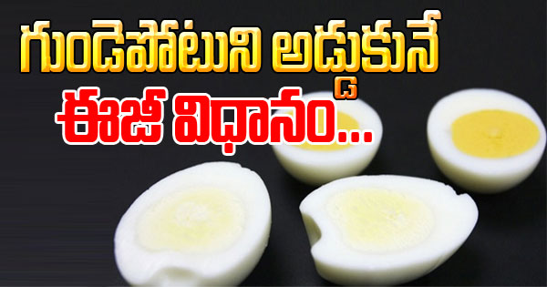 D E- Egg Egg Intake Will Reduce Chances Of Heart Stroke - Study High Quality Protein Nutrients Vitamin A Photo,Image,Pics-