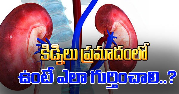 Kidneys Sexual Desires Signs That Tell You Bad Condition Of Toxins Urea Urinate More Often Weakness Photo,Image,Pics-