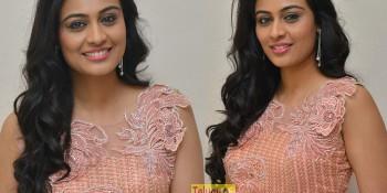 Actress Neha Hinge Pics, Sri Valli Movie Heroine Neha Hinge,
