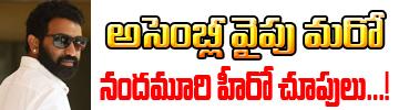 Nandamuri Hero Taraka Ratna Eyes On Assembly Seat Image Photo Pics Download