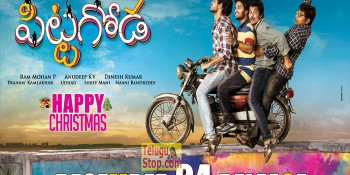 Pittagoda Movie Release Poster At Punarnavi Bhupalam