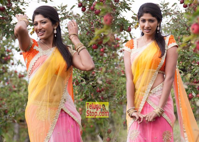Roshini Prakash New Stills