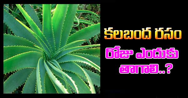 Benefits of drinking Aloe Vera juice regularly-
