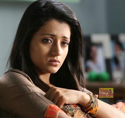 Jallikattu Issue  :  Trisha Deactivates Her Twitter- Telugu