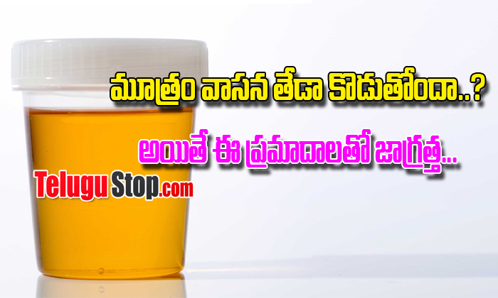 Your Urine Odor Should Come With These Health Problems- Telugu