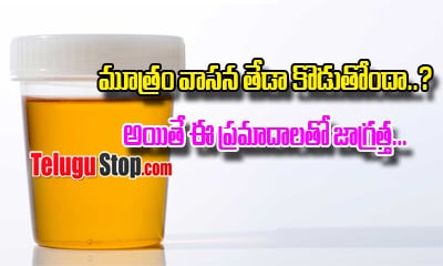 Your Urine Odor Should Come With These Health Problems---