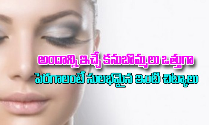 How To Grow Thick Eyebrows Naturally- Telugu