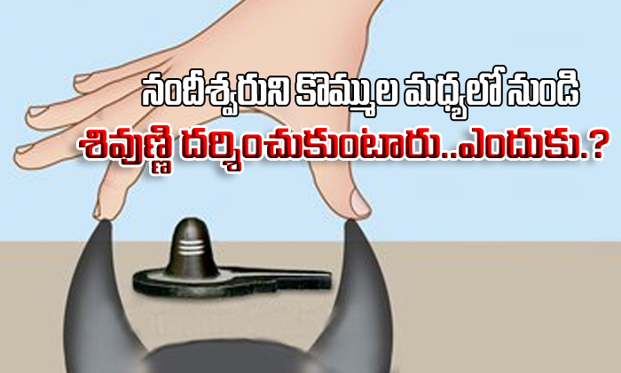 Why We See Lord Shiva From Bull Horns Why Do We See Lord Shiva--Why We See Lord Shiva From Bull Horns Do Shiva-