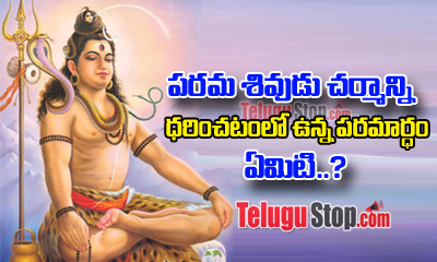 Secret Behind Lord Siva Seen Wearing Tiger Skin---