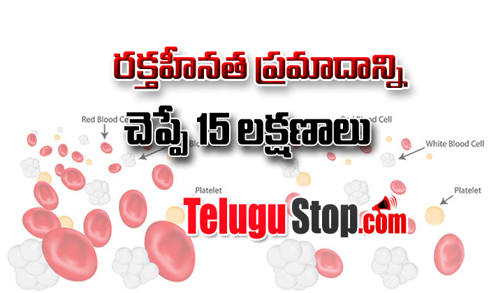 15 Signs Of Anemia You Should Know- Telugu