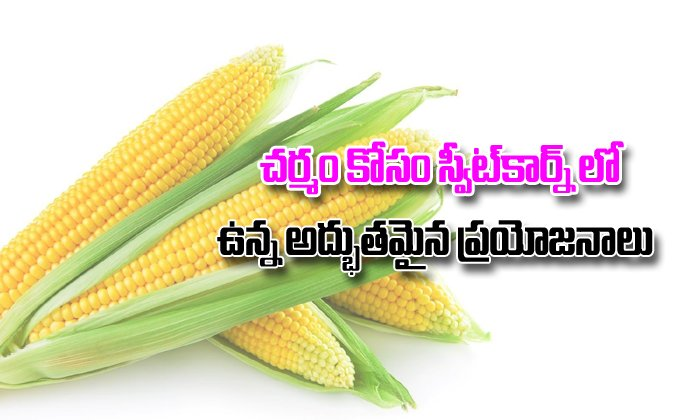 Amazing Benefits And Uses Of Sweet Corn For Skin--Amazing Benefits And Uses Of Sweet Corn For Skin-