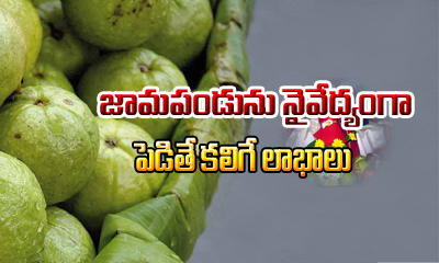 Guava Fruit Importance In Pooja-importance In Pooja,telugu Devotional-Guava Fruit Importance In Pooja-Importance Pooja Telugu Devotional