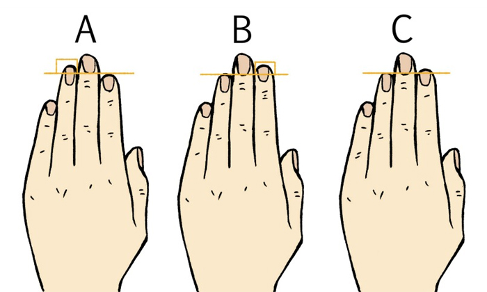 Hand Fingers Length Tells Your Personality--Hand Fingers Length Tells Your Personality-