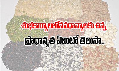 Can We Use Navadhanya For All Hindu Rituals?-navadhanyalu-Can We Use Navadhanya For All Hindu Rituals?-Navadhanyalu