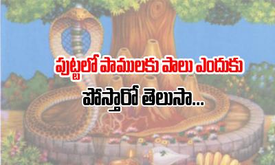 Why We Pour Milk To Snake- Telugu Devotional Bhakthi(తెలుగు భక్తి ) Why We Pour Milk To Snake--Why We Pour Milk To Snake-