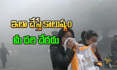 Vitamins Reduces Air Pollution--
