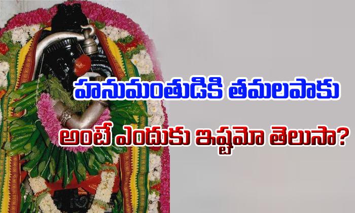 హనుమంతుడికి తమలపాకు అంటే ఎందుకు ఇష్టమో తెలుసా? Devotional Bhakthi Songs Programs
