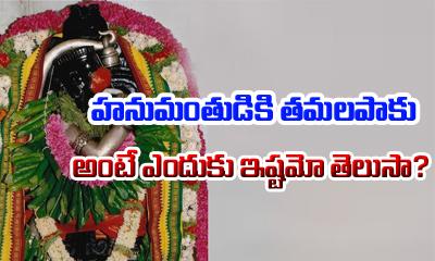 Why Doing Tamalapaku Pooja To Hanumanji--