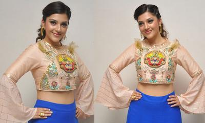 Mehreen Kaur Pirzada Stills-Mehreen Kaur Pirzada Stills--Telugu Actress Hot Photos Mehreen Kaur Pirzada Stills---